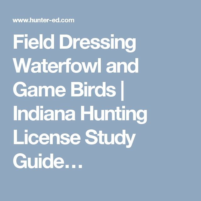 Field Dressing Waterfowl and Game Birds | Indiana Hunting License Study Guide…