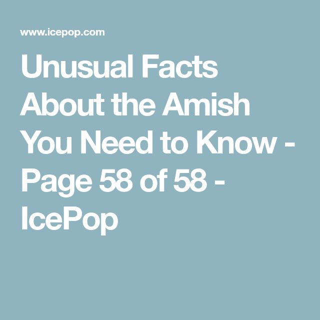 Unusual Facts About the Amish You Need to Know - Page 58 of 58 - IcePop