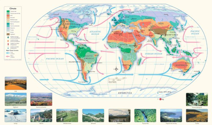 Education - Classroom Decor - Science - Map of the World's climate zones. Temperature and precipitation extremes are shown, as well as major ocean currents. Inset pictures of each climate zone depict typical types of vegetation found in those areas. You can write directly on the map with dry erase and even use magnets! Find this map and more here http://www.mapsales.com/geonova/world-wall-maps/world-climate-wall-map.aspx?utm_source=pinterest&utm_medium=pin&utm_campaign=teach