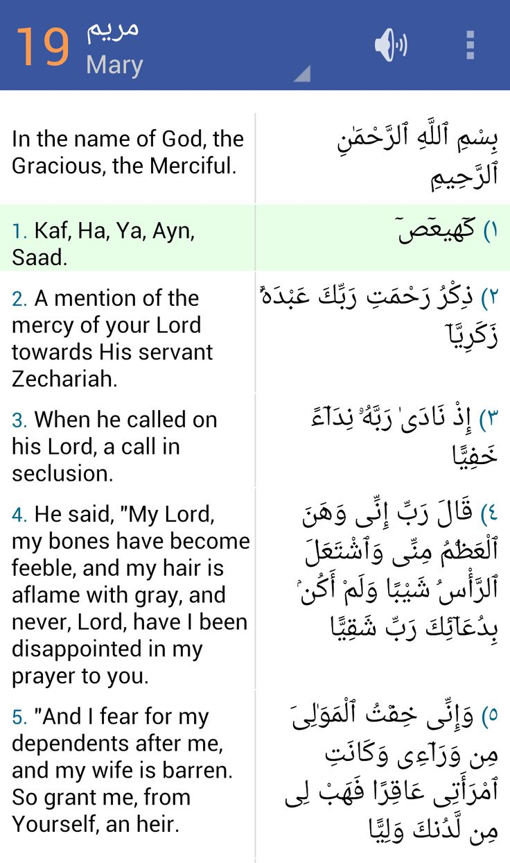 Quran for android applications android sur google play - Clearquran Android App Https Play Google Com Store