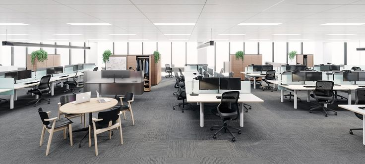 3d Interior render - office fit out