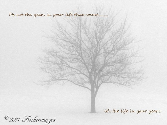 Black & White Lone Tree In Winter Fog With Inspirational