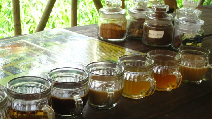 Visit the plantations and taste a dozen of freshly brewed teas and coffees. Also, don't miss out on some exotic fruits that Bali has to offer