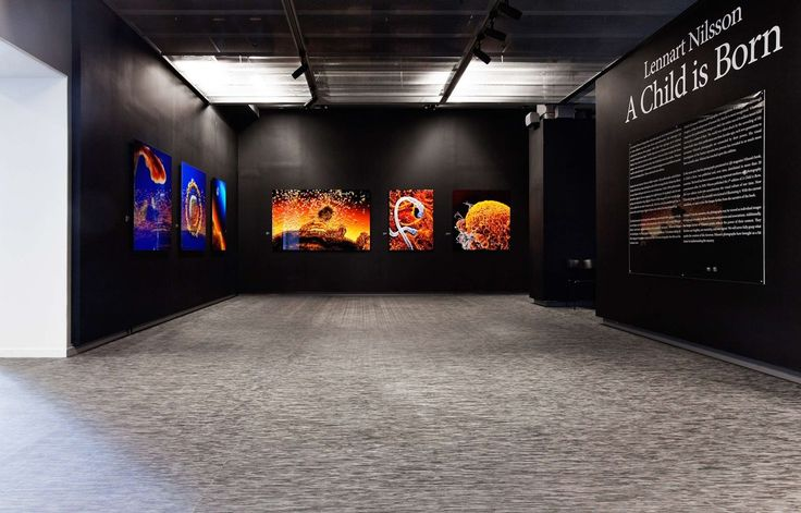 Bolon flooring in the museum Fotografiska in Stockholm, Sweden.