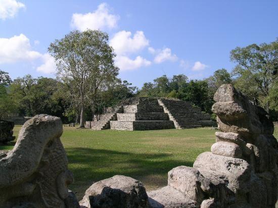 La Ceiba, TripAdvisor