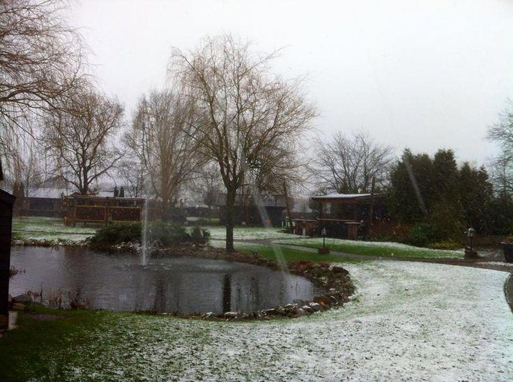 Winter tuin bij de Zwaluwhoeve