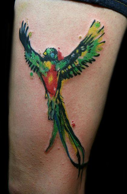 Quetzal Tattoo | quetzal watercolor tattoo