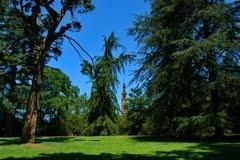 jardin botanico gijon