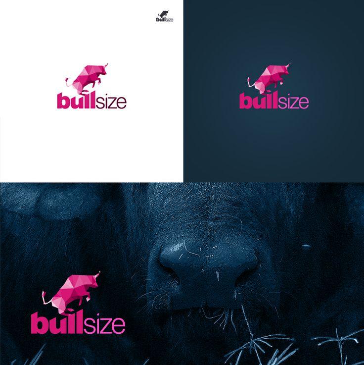 Logotype for Bullsize. #logo #logotype #id #identity #design #synkro #synkrointeractive #carbone #bullsize #lodzdesign #lodz