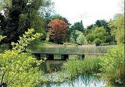 Water gardens harlow town park - Google Search