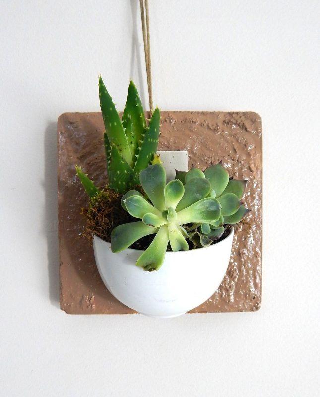 Oltre 25 fantastiche idee su appendere le piante su - Vasi con piante grasse ...