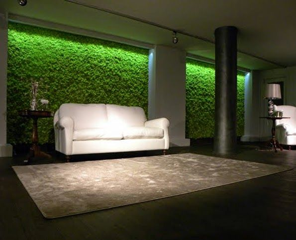 ber ideen zu b ropflanzen auf pinterest zimmerpflanzen b ros und schreibtisch pflanze. Black Bedroom Furniture Sets. Home Design Ideas