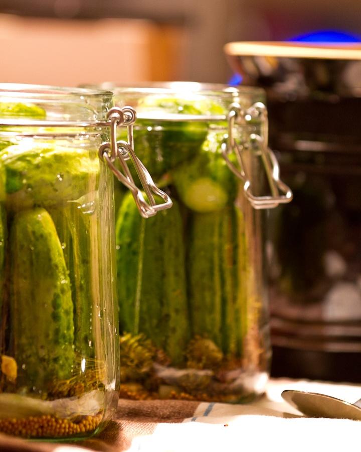 Cucumbers pickle