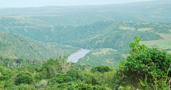 Olive deck Sibuya Game Reserve is a great view point for sunrise bush drive coffee and snack http://www.sibuya.co.za