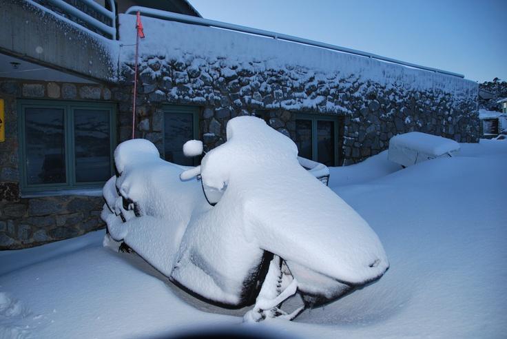 Skidoo in snow @ Perisher