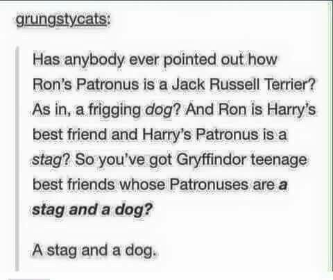 Ron's patronus has a twofold meaning. The first as mentioned, but the second is in relation to hermione's otter patronus! Jack Russells hunt otters!