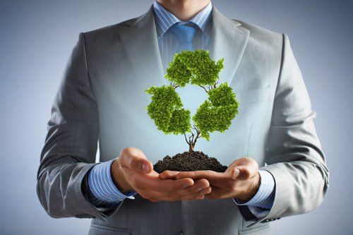 4 Easy Ways to Make your Business More Eco-Friendly