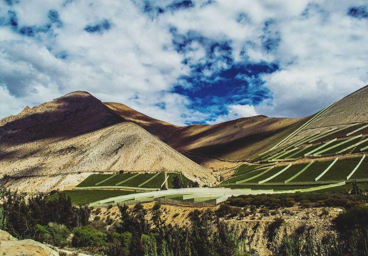 On instagram by ignaciovvl22 #landscape #contratahotel (o) http://ift.tt/2od2NXn del Elqui rumbo a Pisco Elqui  --------------------------- #valledelelqui #piscoelqui #piscoelquichile #chile #chilegram #nortedechile #norte #desierto #desert #paisaje  _captures #nikon #nikonphotography #photographer #photography #fotografia #natgeotravel #natural #naturaleza #viñas #paisajes #cordilleradelosandes #instachile #chiletravel #trip