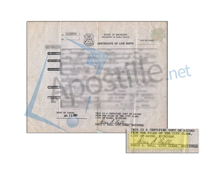 27 best State of Michigan Sample Apostille images on Pinterest - copy alameda county records birth certificate