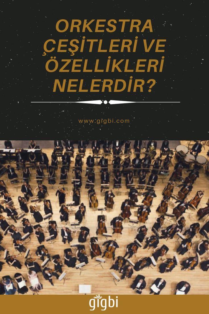 Orkestralar genel olarak aynı işi yapmalarına rağmen birbirinden ayrılan yanları vardır. Orkestra çeşitleri ve özellikleri açısından değerlendirildiğinde kuruluş amacına göre dahi birbirinden ayrılmaktadır.