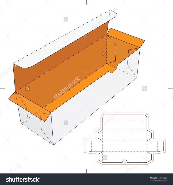 Bottle Cardboard Box With Blueprint Layout Stock Vector Illustration 168112325 : Shutterstock