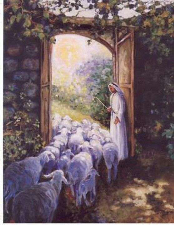 John 10:7 ~ The Good Shepherd is the gatekeeper