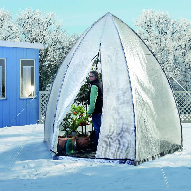die besten 17 ideen zu bananenpflanze auf pinterest. Black Bedroom Furniture Sets. Home Design Ideas