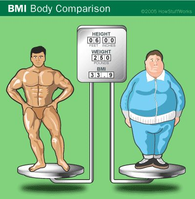 34 best images about body composition on pinterest | human anatomy, Muscles