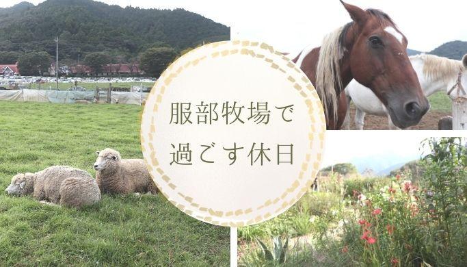 神奈川県にある服部牧場では 動物たちと触れ合ったり おいしいアイスやソーセージを味わったり 素敵なこだわりガーデンまでありました この記事では 服部牧場に行ってきた感想を写真とともに紹介しています 牧場 動物 神奈川