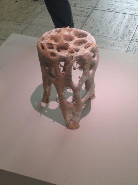 Hier zie je een stoel gemaakt van paddenstoelen schimmel.