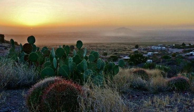 71 Best Rockhound State Park Images On Pinterest