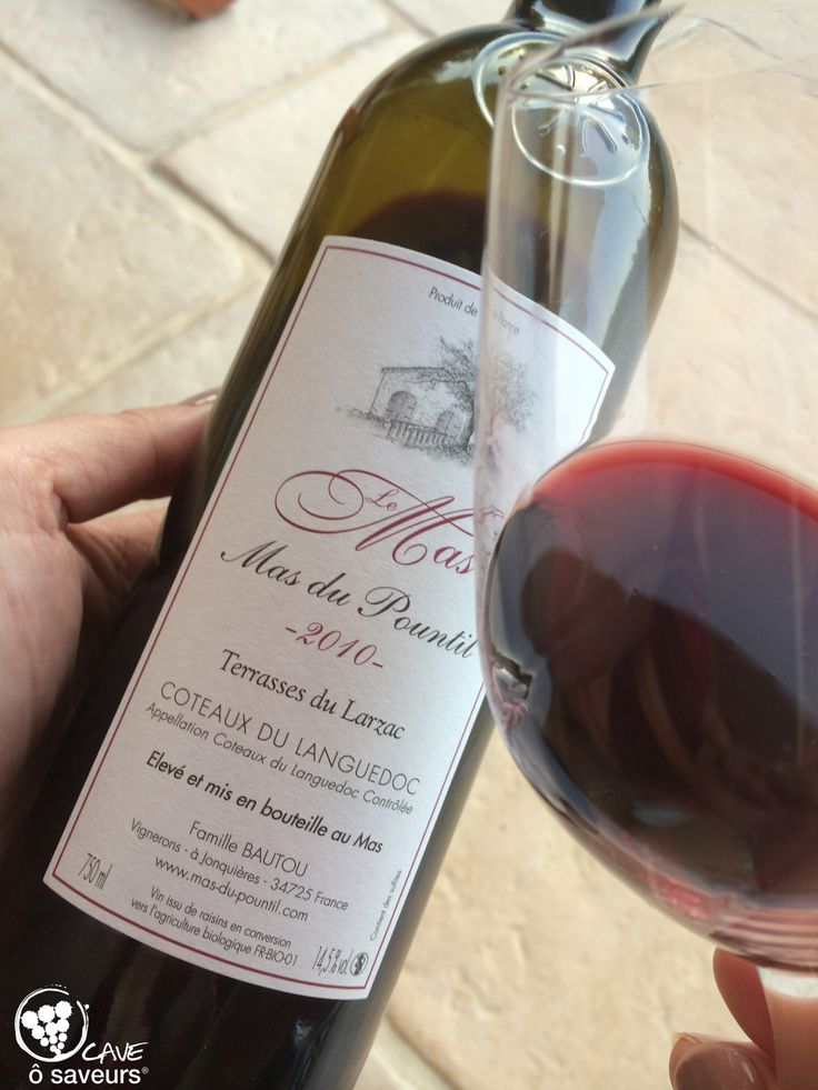Si vous aimez les vins du Languedoc, si vous aimez les vins qui ont du corps, du coffre, bien structurés, je vous propose le Mas 2010 du Mas du Pountil ! Des arômes de fruist frais au nez puis après avoir été carafé, des notes d'épices et de pain grillé. Un vrai régal à partager sur du gibier ou une bonne viande rouge !