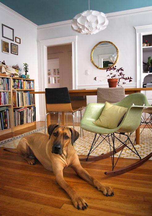 Oscar's Eames Chair