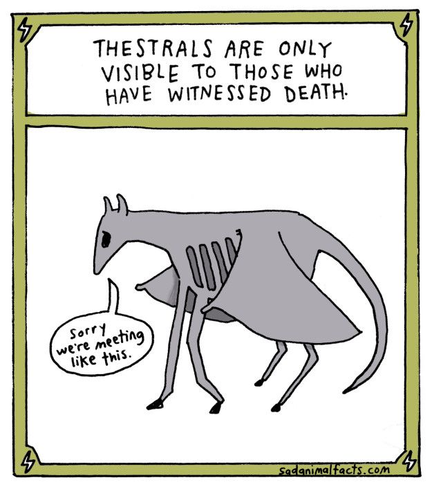 Of course, everyone knows about Thestrals. | This Artist Illustrated Adorably Sad Facts About Harry Potter Creatures