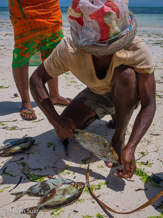 A local fisherman with his catch of the day. Click to see more of my favourite images from Zanzibar, Tanzania.