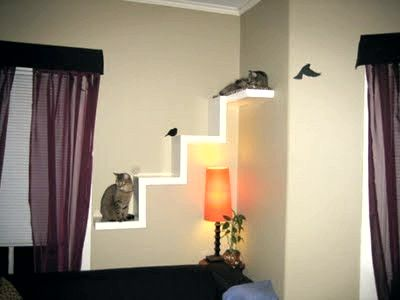 Another idea for cat shelves on the wall, also made with IKEA Lack shelves.