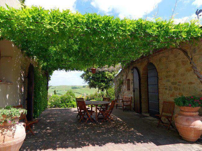 Enredaderas para tu jardin roof garden ideas pinterest - Pergola de jardin ...