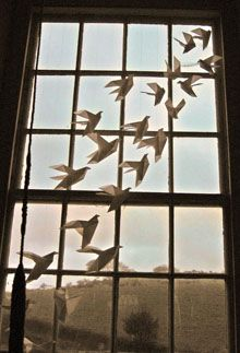 the bothersome beauty of pigeons essay Free essays on the bothersome beauty of pigeons get help with your writing 1 through 30.
