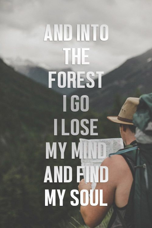 And Into The Forest I Go, I Lose My Mind And Find My Soul ❤ @prohikes #camping #hiking #travel #outdoor
