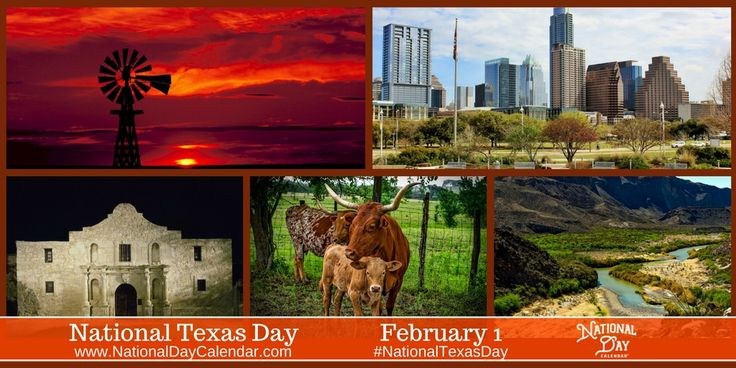 National Texas Day - The 28th state may not be the only state with a record of being a republic, but their dramatic revolution and fight for independence keep Texas history alive. via @nationaldaycal