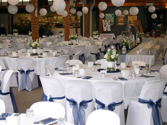 15 best wedding day brisbane images on pinterest brisbane Wedding Linen Brisbane they have a team of specialists that can be hired along with wishing wells wishing wellbrisbane wedding linen hire brisbane