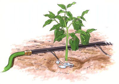 Top 25 ideas about Drip Irrigation on Pinterest Gardens