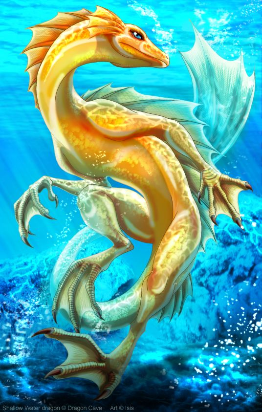 The new species of Sigesfur (Himmelfell) OP Water Dragon