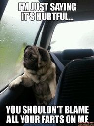 I'm just saying it's hurtful...You shouldn't blame all your farts on me.