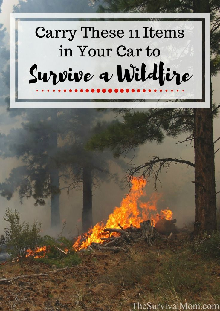 Driving near or through a wildfire is terrifying. With this list of must-have items to carry in your car, it could save your life.