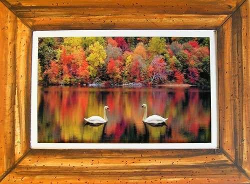 Cardboard Picture Frames.