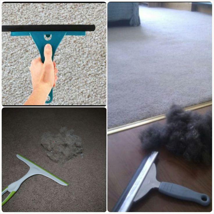 Retira la pelusa de tu alfombra con una escobilla de goma de caucho