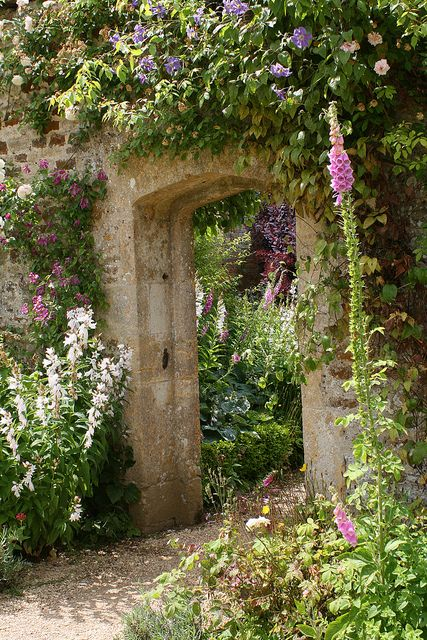 ROUSHAM HALL GARDENS - note to self: don't deadhead the foxgloves when they start to look a little old. They're always disappointing when they rebloom, and this one here is really great, in a raggedy sort of way.