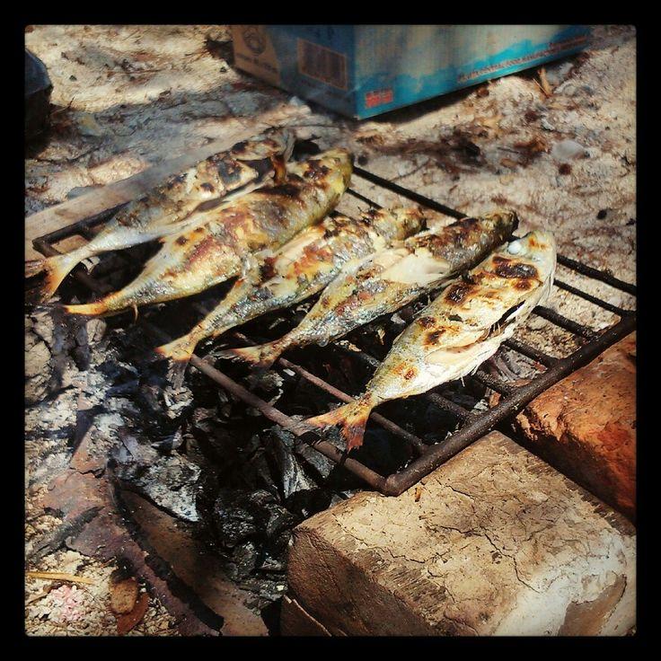 Bakar-bakar ikan :D