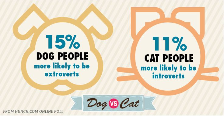 Dog lovers are extroverts, cat overs introverts